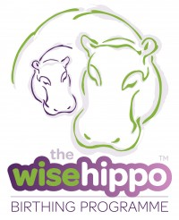 The wisehippo birthing programme